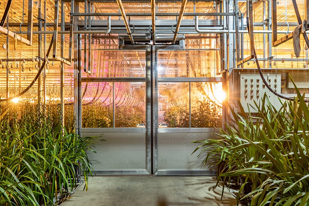764 Jansen tuinbouw deur 1024
